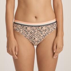 Braga corte Bikini, Fame, Primadonna Twist